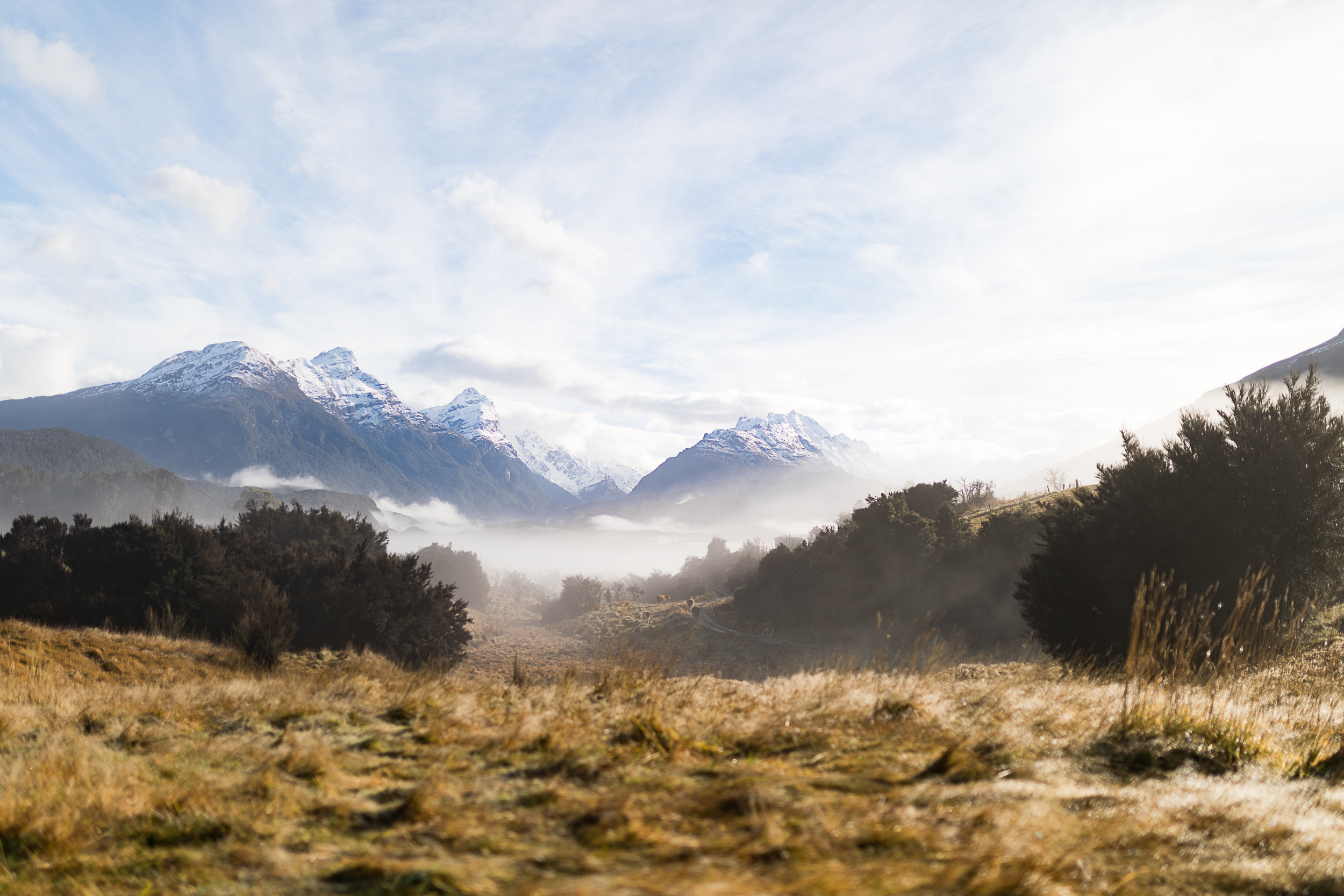 Views from Paradise Trust up Dart Valley - Susan Miller Photography